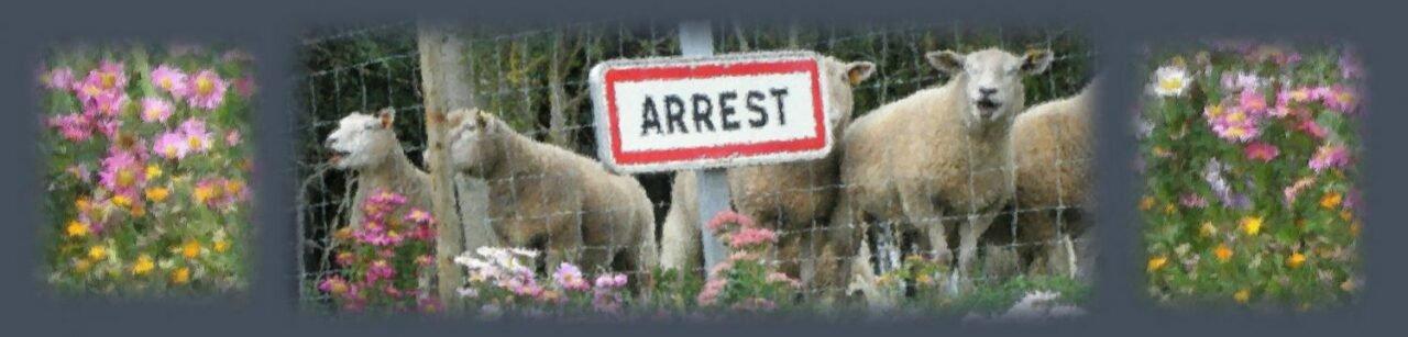 Mairie d'Arrest